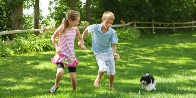 A young brother and sister playing outside with their small black and white dog. The Turf Doctor provides tick control in Maine, protecting children, pets, and the entire family from ticks.